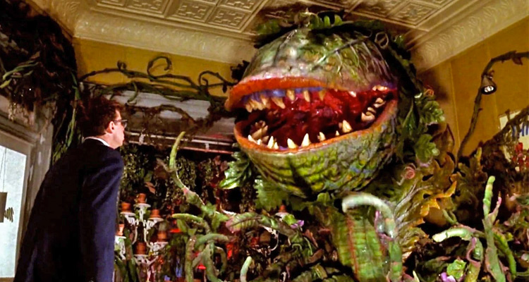 Feed Me We Re Screening The Director S Cut Of Little Shop Of Horrors At Avalon Theater